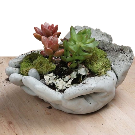 HOME-DZINE | Garden Projects - Use bagged cement to make your very own concrete 'hands' planter for the garden, or for the home.