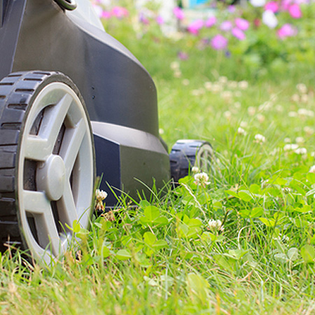HOME-DZINE | If you want a lawn in tip-top condition for summer, now is the time to get going with Spring lawn care and treatment.