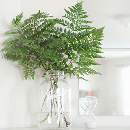 Foliage can look just as beautiful as flowers. Cut interesting leaf shapes and designs and place these in a vase as you would fresh flowers.