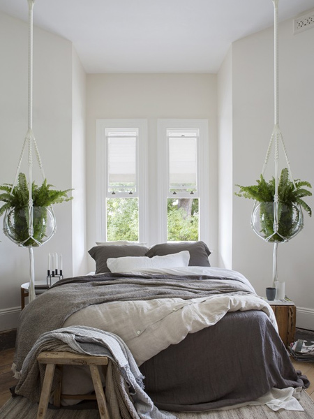 Hanging plants are a wonderful way to bring a touch of the garden to your indoor spaces. We look at crafty ideas for hanging plants.