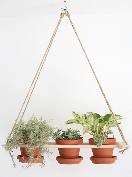 Some sisal rope and a scrap piece of timber and you can make an attractive plant hanger for very little cost. This is a great idea for using reclaimed wood pallets as well.