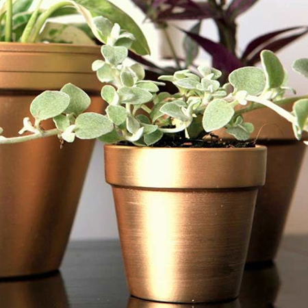 HOME-DZINE | Make a statement with copper flower pots - spray the entire pot or add interesting patterns.