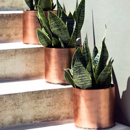 HOME-DZINE | Even your outdoor spaces will love copper. Use it on aluminium, plastic or clay pots to add some glamour to a patio or deck.