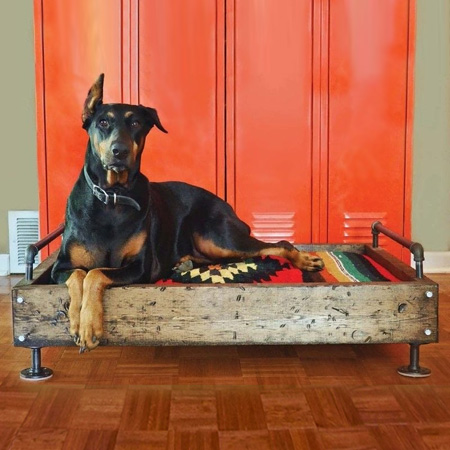 Why pay a fortune for a dog bed when you can make your own using pallet wood and galvanised pipe and fittings. Make a colourful custom cushion using fabric and filling that can easily be washed.