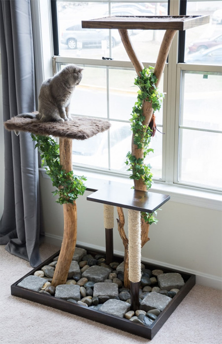 HOME-DZINE | If you're trimming trees and shrubs this winter, keep a few branches on hand to make this DIY cat play stand.