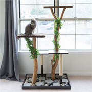 Cat Play Stand with Branches