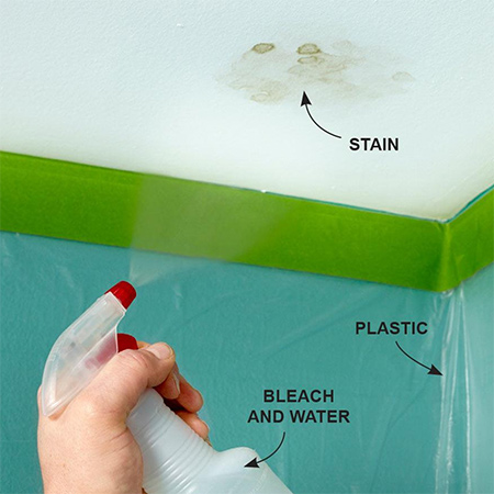 Quick Tip: Get rid of ceiling mould