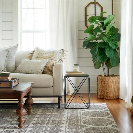 Home Dzine Home Decor The Perfect Size Rug