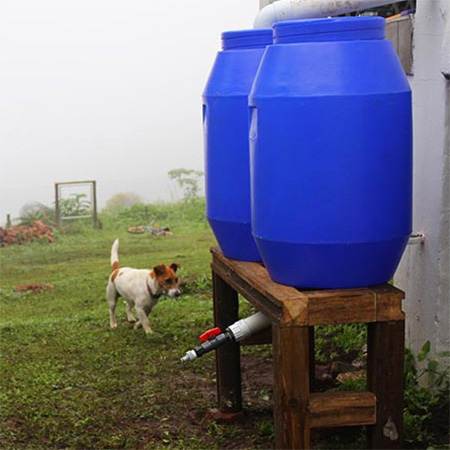 Home dzine garden ideas diy rainwater harvesting system for Explanation of rainwater harvesting
