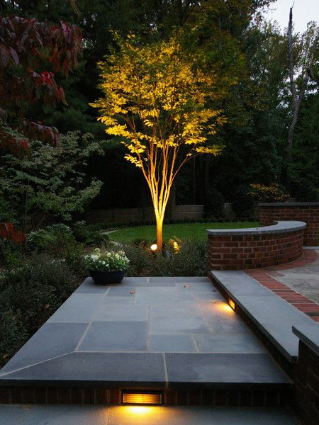 HOME-DZINE - Garden Lighting - Use low-voltage or solar lights to accentuate areas under pergolas, secluded benches or pretty arches, or highlight the structural shape of an elegant tree.