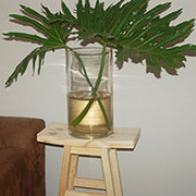 Pine Plant Stand with Curved Top