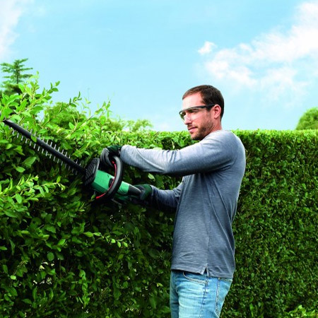 guide to trimming garden hedges