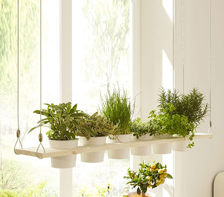 home dzine easy diy projects plant up an indoor herb garden and display - Hanging Herb Garden Ideas