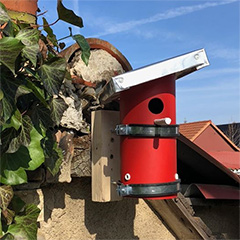 pvc pipe bird house