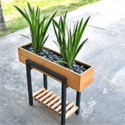 stylish planter