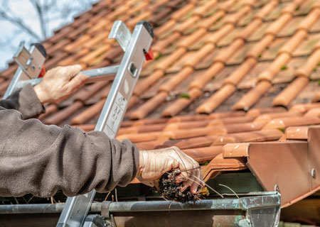 Ensure gutters and downspouts flow freely