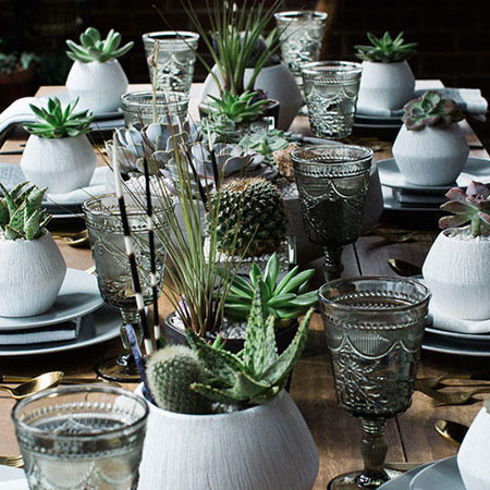 use succulents as decor
