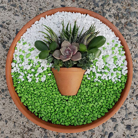 Home Dzine Garden Ideas Miniature Succulent Gardens