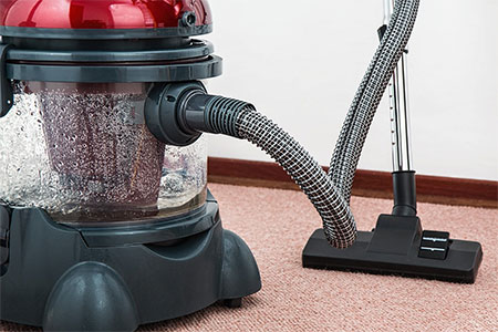 3 Ways on How to Make Your Pet Less Sensitive to Hair Vacuums