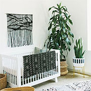 add plants to your baby's room