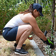 posture for gardening