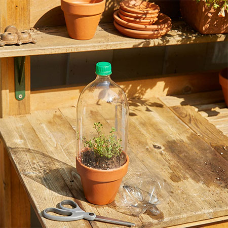 recycle plastic bottles for use in garden