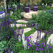design therapeutic garden
