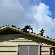 dont delay roof repairs
