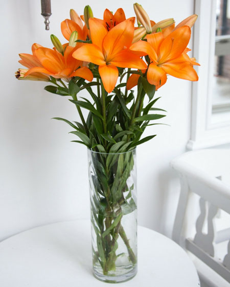 tall vase for long stemmed flowers