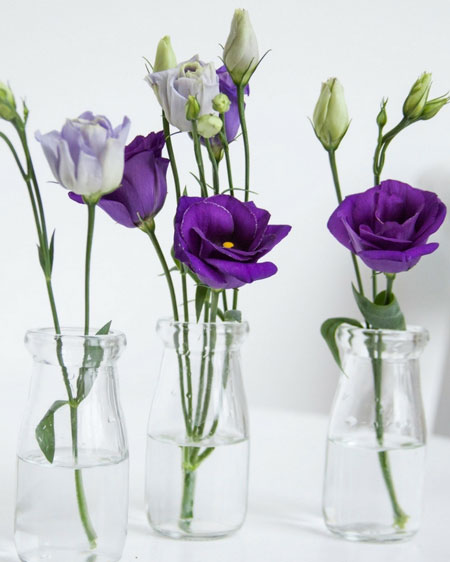 bud vases for single flowers or buds