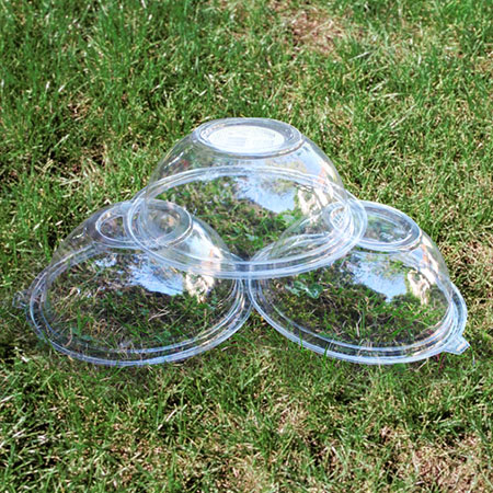 Make a Bird Feeder using Plastic Salad Containers