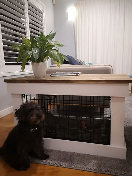 Make a Coffee Table that's also a Dog Crate