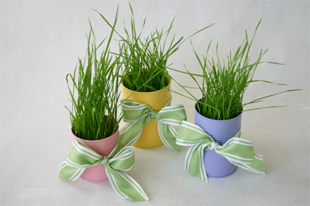 Grow your own wheatgrass