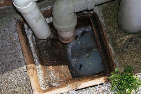 Home Dzine Home Diy Why Do Drains Block