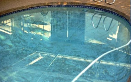 How To Clean Algae Off Vinyl Pool Walls Thecarpets Co