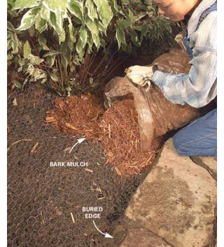 Home Dzine Garden Stop Dogs From Digging In Garden Beds