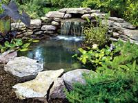 Home Dzine Garden Ideas Build Your Own Garden Pond