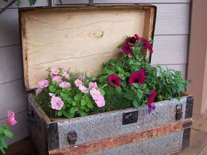 container displays in the garden